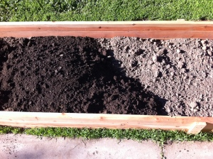 SB Venice Soil