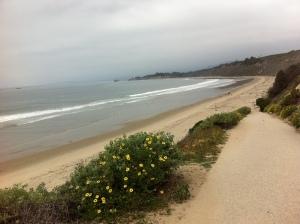 carp coast